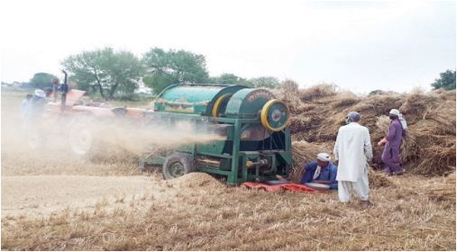 Swaraj 735 FE Threshing.